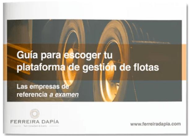 Ferreira Dapia ejemplo de guía de compra